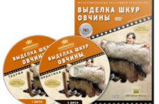 Видеокурс «Выделка шкур овчины»